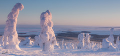 A view from Riisitunturi (MatsOnni) Tags: riisitunturi posio lapland finland winter snow cold