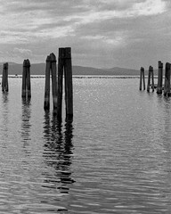 Lake Champlain (1). (henry_beckmeyer) Tags: leicamp summilux5014v1 berggerpancro400 xtol