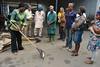 Cassava Breeding Unit donates sweeping rakes to FMS staff (IITA Image Library) Tags: cassava manihotesculenta cassavabreedingunit facilitymanagementunit rakes iita