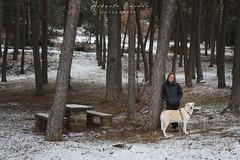 IMG_7677.jpg (Aildrien) Tags: lena jaca chenia mountains outdoor snow pirineos trees 50mm arboles pet pyrenees parador dog oroel aragon nevada trekking nieve mountain