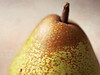 Freckled Pear (Through Serena's Lens) Tags: hmm macromondays speckled freckled pear fruit macro stilllife dof canoneos6dmarkii 7dwf