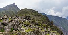 Machu Picchu 49