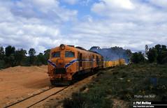 J549 XA1415 XA1403 departing Yealering 6 September 1984 (RailWA) Tags: railwa philmelling joemoir yealering