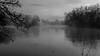 Matin brumeux 3 (pixdelight) Tags: blackandwhite normandie normandy bnw blackandwhitephotography france seinemaritime lake lac fog brouillard brume noiretblanc bw