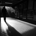 Shadow man ... thumbnail
