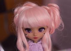 Pink buns (Bianca Hopkins) Tags: pullip doll pink buns cute pastel goth custom full wig eyechips purple asian fashion japanese