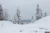 Finngruvorna view 2 (kentkirjonen) Tags: canon 80d sweden sverige ue wood trä snow snö view vy finngruvorna finngruva pine tall fir gran birch björk frost cold winter vinter