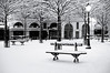 Paris (Yann OG) Tags: paris parisien parisian france français french placedauphine cité îledelacité nb noiretblanc blackandwhite bw 50mm f18 neige enneigé snow contraste contrast bokeh