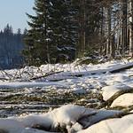 Harz-Oderbrueck_e-m10_1012074127 thumbnail