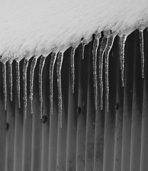 Frozen Fringe (Rob Singfield) Tags: ice icicles snow barn monochrome blackandwhite winter fetternear kemnay aberdeenshire scotland