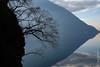 Le Lago di Lugano non loin de Gandria (Tessin), en hiver (25/12/2017 -09) (Cary Greisch) Tags: che carygreisch gandria lagodilugano scarigiöla sentierodellolivo switzerland ticino