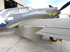 "North American P-51A-10-NA Mustang 2 • <a style=""font-size:0.8em;"" href=""http://www.flickr.com/photos/81723459@N04/25901587298/"" target=""_blank"">View on Flickr</a>"