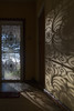 screen door colour (Mariasme) Tags: aroundthehouse front screendoor pattern wall matchpointwinner mpt603