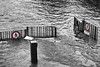(G.Grisel) Tags: paris riverseinefloods cruedelaseine janvier2018 floods