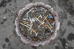 DSC_9411 (kabatskiy) Tags: kyiv city street flowerbed gardenbed ashtray sticks cigarette cigaretteends stubs stumps garbage