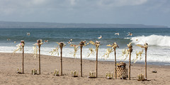Well, I offered (A Different Perspective) Tags: bali petitenget bamboo basket beach offering pantai sand surf water