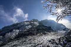 Hayas con escarcha (Jabi Artaraz) Tags: jabiartaraz jartaraz árboles escarcha frío sol sun amanecer cielo azul blanco estrella nature antzigarra anboto elgoin