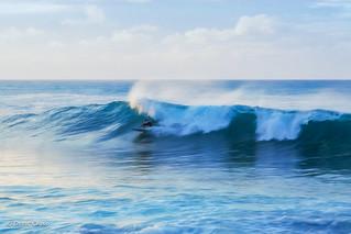 Surfing Turtle Bay