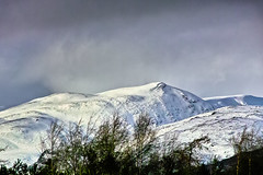 Wild mountain. (Fr Paul Hackett) Tags: mountain snow trees clouds wind