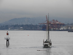 In the Port of Vancouver (knightbefore_99) Tags: port vancouver ocean sea pacific west coast sailboat awesome bc canada grey winter harbour coal cranes red