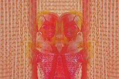 god made you (meeeeeeeeeel) Tags: art weird doll barbie barbiedoll