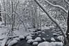Winter in Smolenski Park (JBtheExplorer) Tags: smolenski park mount pleasant wisconsin winter stream flowing water