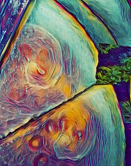 Succulent Swirls (instamatiic.3nigma) Tags: melon fruity fruit