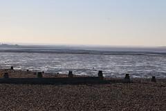 IMG_7036 (cindyincidentally) Tags: whitstable kent kentcoast britishbeach seaside seashore seasidetown