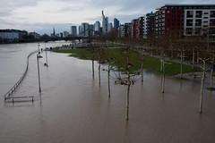 Hochwasser am Main-bw_20180107_7325.jpg (Barbara Walzer) Tags: 070118 hochwasser main mainufer