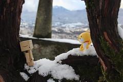 IMG_0212 (SethDanbo) Tags: danbo danboard danbox cardboard cardbox box amazon danbolove teddy yellow brown gundam gunpla snow white winter little tiny actionfigure action figure robot