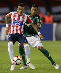 Junior Barranquilla x Palmeiras (01/03/2018) (sepalmeiras) Tags: copalibertadores juniorbarranquilla metropolitano palmeiras sep juniorbarranquillacolxpalmeiras01032018 antoniocarlos