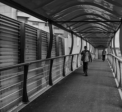 ACA_385 (Andy C. Arciga) Tags: blackandwhite blackandwhitestreetphotography blackandwhitestreet streetlife streetphotography streetscene street sonyrx1rmarkii streetshots monochrome metrolife mirrorless people leadinglines