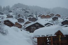 Comme il faut.... (ColmDub) Tags: grimentz snow alps valais switzerland snowfall mountains alpine plough dog man