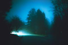 Back Roads (Atmospherics) Tags: fog dreamy nightfog darkroads backroads cinematic lowlight atmospherics bluelight foglight moody winterfog winterlight nightscene
