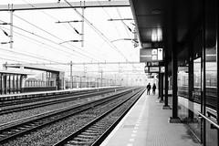 DSCF2013 copy (lo.tra) Tags: platform people lotra utrecht fujix