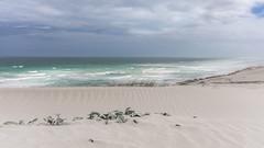 Where dunes meet the sea (hjuengst) Tags: dehoopnaturereserve southafrica clouds dunes ocean indianocean wave light
