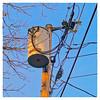 2-14666 (Timothy Valentine) Tags: 2018 0218 telegraphtuesday square latelight pole intheneighborhood eastbridgewater massachusetts unitedstates us transformer
