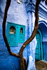 DSC_3658 (Doctorbabaguy_1) Tags: chefchaouen morocco color blue