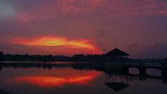 Last Embers (elenaleong) Tags: lowerpeircesunset lowerpeircereservoirpark sundown lastlight nightfall twilight elenaleong silhouettes reflections serene tranquil quiet oldpier