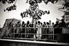 NFX3882 (Toonfish 67) Tags: london londoncity nikond700 nikon d700 streetphotography blackwhite underground camdentown camdenlock saintpancras towerbridge londoneye toweroflondon