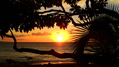 Keawakapu Beach Sunset (Jim Mullhaupt) Tags: photo flickr geographic picture pictures camera snapshot photography nikoncoolpixp900 nikon coolpix p900 nikonp900 coolpixp900 kihei maui hawaii keawakapubeach sunset sundown dusk sun evening endofday sky clouds color red gold orange pink yellow blue tree palm outdoor silhouette weather tropical exotic wallpaper landscape jimmullhaupt cloudsstormssunsetssunrises pacificocean beach island southpacific surfing surf vacation holiday travel usa family kids surfers waves boating coral volcano mountains