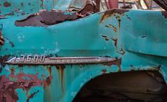 King of the Road (jtr27) Tags: dscf4470xl jtr27 fuji fujifilm fujinon xt20 xtrans xf 35mm f2 f20 rwr wr maine junkyard truck chevy chevrolet 3600 aqua teal rust pickup