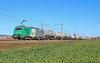 Woippy Sibelin à Meursault (AziroxY) Tags: bb27000 trains trainspotting photo photographie plm photosncf bourgogne citerne ciel bleu matin