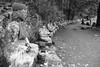 Japanese walk 4 (danielsan14) Tags: path nikko japan