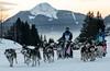 Christophe et Yohann... (J&S.) Tags: france hautesavoie agy grandeodyssée musher chien neige course traineau hiver lemôle hasler henry