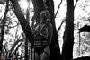 IMG_0063-2 (m.acqualeni) Tags: manuel manu acqualeni photographe thrash trash fille femme girl nu nude horreur masque mask oxygène art alternative alternatif modèle model tattoo gothique gothic sm gaz fétichiste fetish foret forest nature