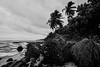 "Mystical (Peter_069) Tags: malediven maldives atoll ""addu meedhoo maradhoo paradis paradise ocean sea water wasser ozean palmen"