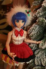 Christmas Usagi and Ami / Sailor Moon (frostyangel1985) Tags: usagi ami sailor moon сrystal sm serenity dd dds volks dollfie dream merry christmas happy new year xmas mercury