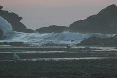 IMG_2964 (armadil) Tags: mavericks beach beaches californiabeaches scenic sunset