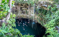 The Ik Kil Cenote (Bernai Velarde-Light Seeker) Tags: cenote yucatan mexico bernai velarde agua hoyo nadando gente